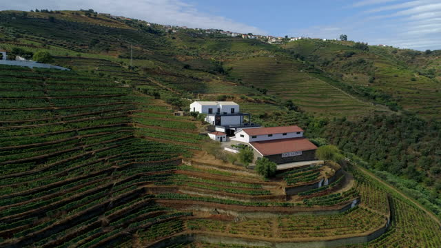 vídeos de stock e filmes b-roll de aerial panning shot of structures amidst plants over landscape on mountains during sunny day - porto, portugal - cena não urbana