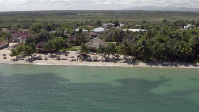 aerial panning shot of tress and tourists resorts by sea during summer, drone moving over sea against sky - hopkins, belize - tropical tree stock videos & royalty-free footage