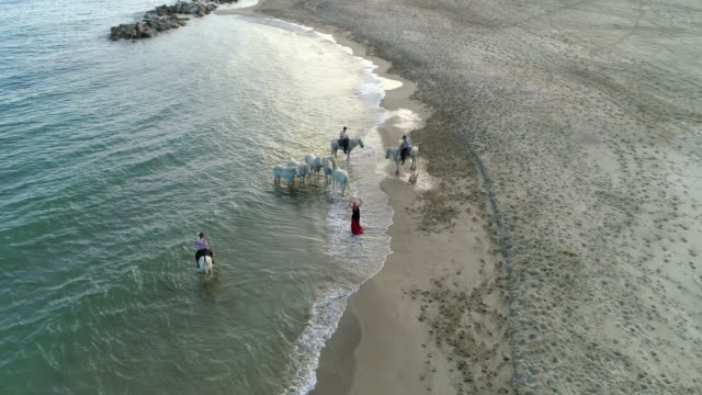 vídeos de stock e filmes b-roll de aerial panning shot of wranglers by woman dancing at sea shore. drone is flying over beach - camargue, france - cultura espanhola
