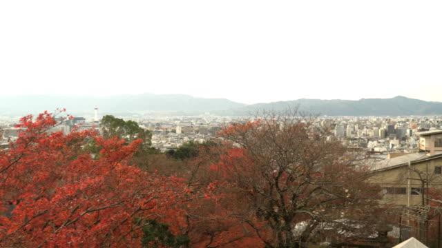 航空写真ビューをパン: 東京都市の eadge の山の範囲です - エンタメ総合点の映像素材/bロール