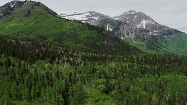 aerial panning view of green forest and mountain top. - american fork canyon bildbanksvideor och videomaterial från bakom kulisserna