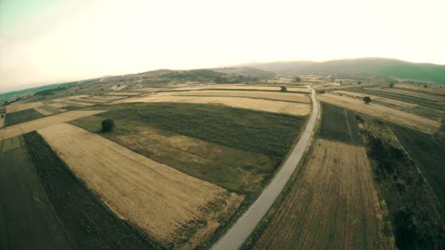 aerial panoramablick über grüne felder, farmen sommer - baumgruppe stock-videos und b-roll-filmmaterial