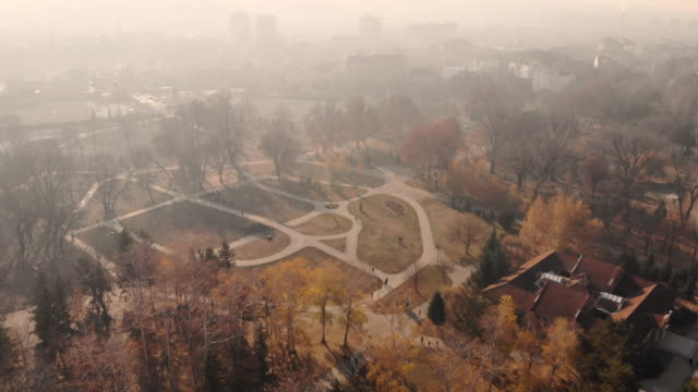 aerial panoramic view of city park in autumn - pinaceae stock videos & royalty-free footage