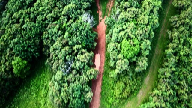 aerial: passing over bright green treetops following red dirt track with puddles - 水たまり点の映像素材/bロール
