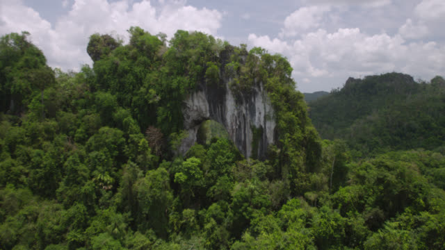 aerial past natural rock arch and forest, belize - natural arch stock videos & royalty-free footage