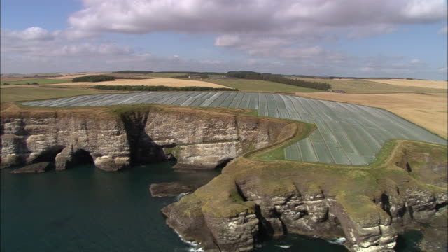 aerial past the cliffs on the coast of south aberdeen / aberdeenshire, scotland - aberdeen schottland stock-videos und b-roll-filmmaterial