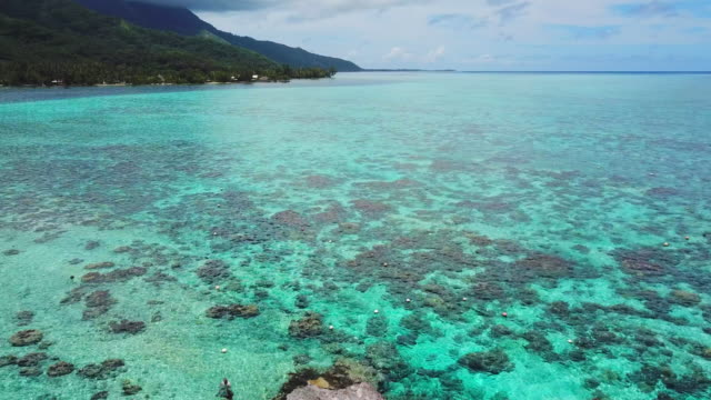 aerial: people in front of their huts in the beautiful tropical ocean in moorea - insel moorea stock-videos und b-roll-filmmaterial