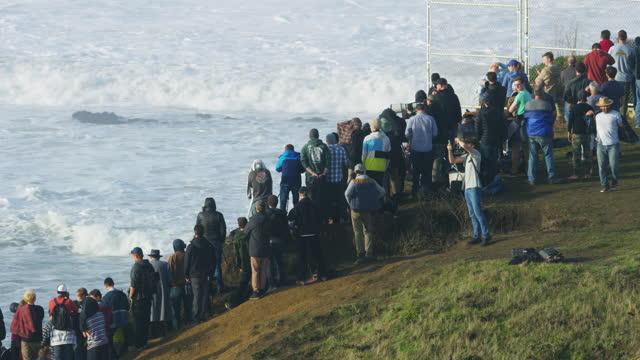 aerial people watching big waves surfing mavericks usa - pacific ocean stock videos & royalty-free footage