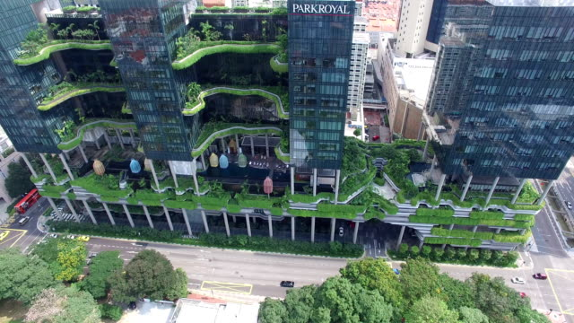vídeos de stock e filmes b-roll de aerial perspective above lush foliage of the architectural park royal on pickering, singapore - folhagem viçosa