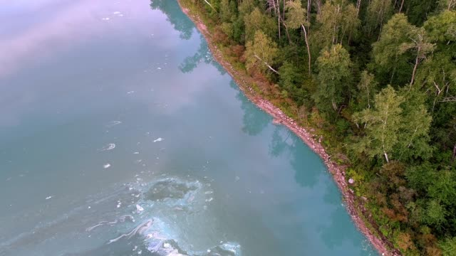 aerial perspective of lakeshore with algae blooms - cianobatterio video stock e b–roll