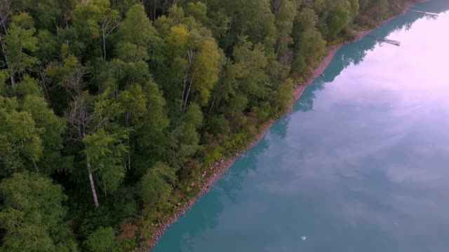 aerial perspective of lakeshore with algae blooms - 寒帯林点の映像素材/bロール