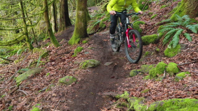 aerial perspective of mature mountain biker riding along lush green path - mountain biking stock videos & royalty-free footage