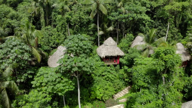 aerial: picturesque tree houses in exotic jungle - hispaniola stock videos & royalty-free footage