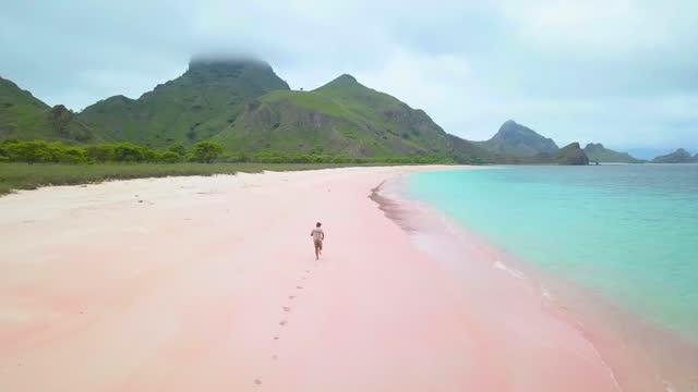 vidéos et rushes de aerial pink beach, komodo national park, flores, indonesia - tropical