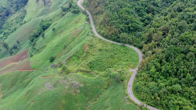 ショットを確立する森林を通る道路の眺めの空中ポイント - 有名原生地域点の映像素材/bロール