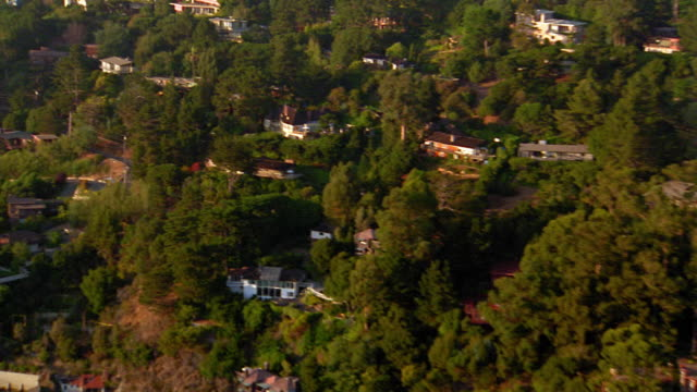 Aerial point of view over houses and mansions on tree-covered hill + along coast near San Francisco / California