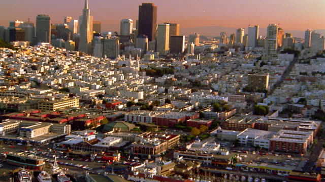 vidéos et rushes de aerial point of view wide shot san francisco cityscape to coit tower / california - transamerica pyramid san francisco