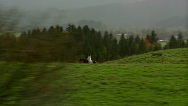 aerial point of view woman on belgian horse through meadow with mountains in background / bavaria, germany - recreational horse riding stock videos & royalty-free footage