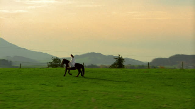 aerial point of view woman on belgian horse trotting through meadow with mountains in background / bavaria - recreational horse riding stock videos & royalty-free footage