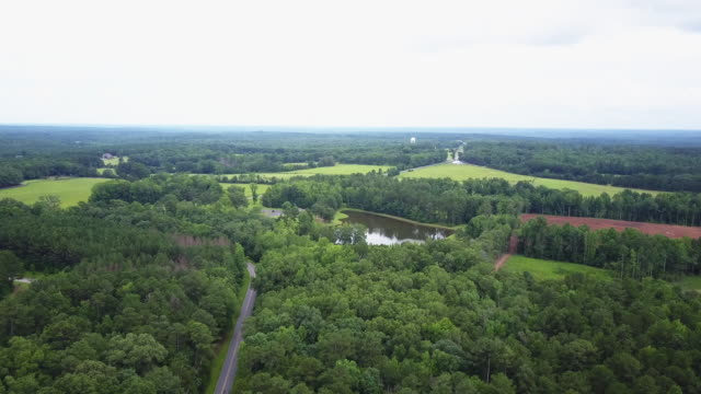 aerial, pond in lush georgia landscape - georgia country stock videos and b-roll footage