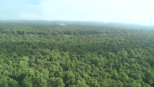Aerial rainforest and river, Maliau Basin, Sabah, Malaysia, Borneo
