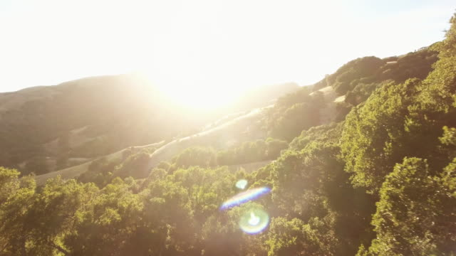 Aerial, rays of sun on Loma Alta hillside