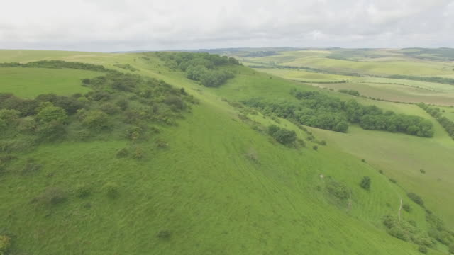 Aerial reveal of South Downs