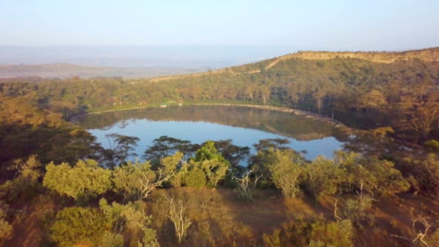 vídeos de stock e filmes b-roll de aerial revealing /crater lake, naivasha, kenya - savana