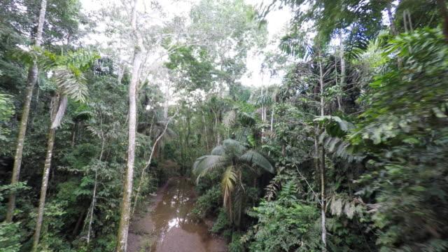 Aerial reverse fly through muddy Amazon Rainforest