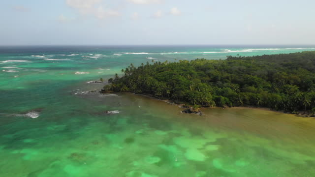 aerial right: palm tree forest next to vibrant blue ocean - little corn island, nicaragua - ニカラグア点の映像素材/bロール