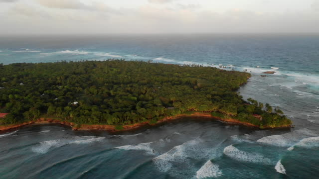 stockvideo's en b-roll-footage met aerial right/spin left: forest covered island surrounded by bright blue ocean - little corn island, nicaragua - eiland