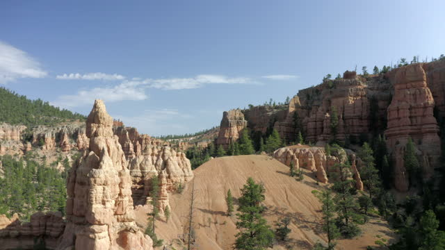 aerial rising from the canyon floor and panning trees and hoodoos under a bright blue sky, with pines and the canyon walls stretching into the background - bryce, utah - ブライス峡谷点の映像素材/bロール