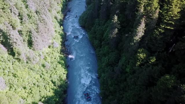 aerial: river rafting through trees in narrow water - rapid stock videos & royalty-free footage
