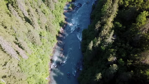 aerial: river rafting through trees - rapids river stock videos & royalty-free footage