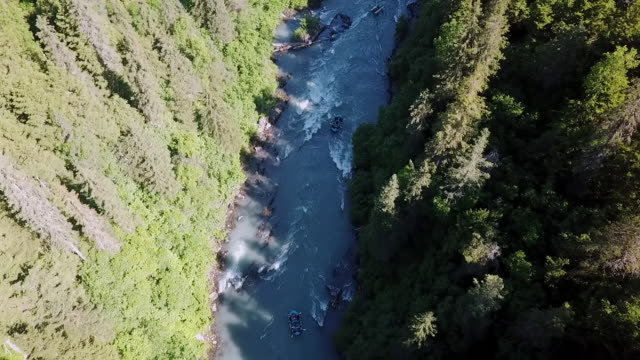 aerial: river rafting through trees - wildwasser fluss stock-videos und b-roll-filmmaterial