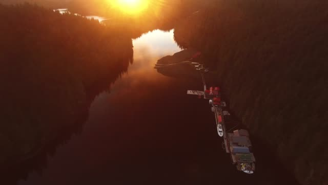 aerial: river surrounded by thick forests at sunset - mystery stock videos & royalty-free footage
