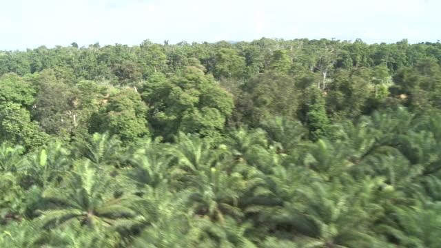 Aerial river through jungle, Maliau Basin, Sabah, Malaysia, Borneo