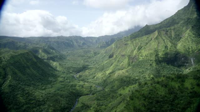 aerial river valley, kauai, hawaii - regenwald stock-videos und b-roll-filmmaterial
