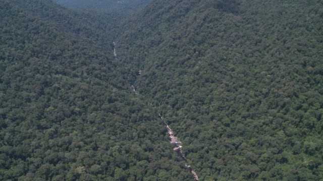 aerial river valley through jungle, maliau basin, sabah, malaysia, borneo - malaysia stock videos & royalty-free footage