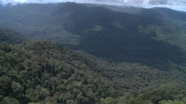 aerial river valley through jungle, maliau basin, sabah, malaysia, borneo - malaysia stock videos & royalty-free footage