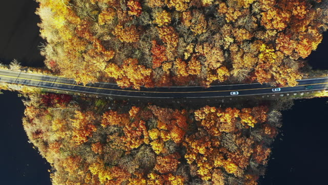 aerial road trip autumn - dusk stock videos & royalty-free footage