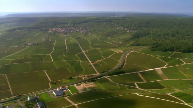 Aerial WS Roads winding through green valley and vineyards with town in distance / Champagne Region, France