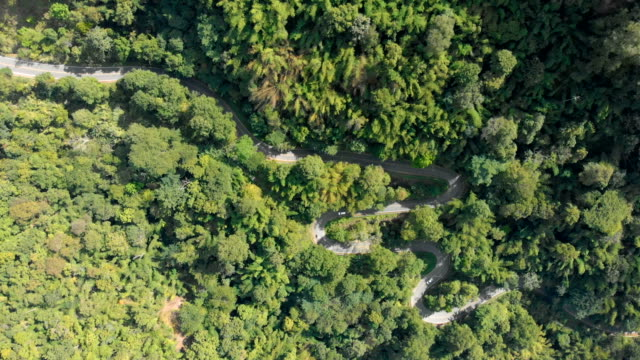 aerial rotating shot winding road on mountain. - tropical tree stock videos & royalty-free footage