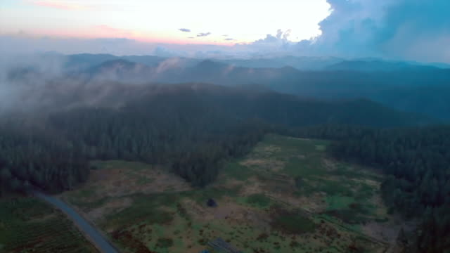 aerial: ruinous buildings on meadow among forest at dusk - dominican republic stock videos and b-roll footage