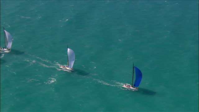 aerial sailboats on biscayne bay / miami, florida - biscayne bay stock-videos und b-roll-filmmaterial