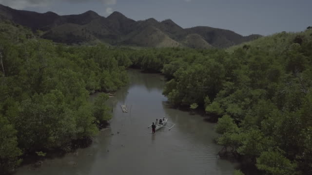 aerial scenes of coron, philippines - mangrove forest stock videos & royalty-free footage