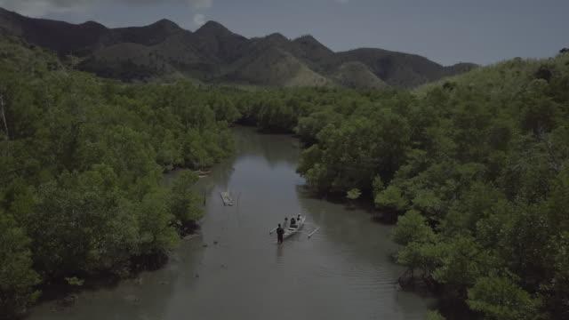 aerial scenes of coron, philippines - mangrove tree stock videos & royalty-free footage