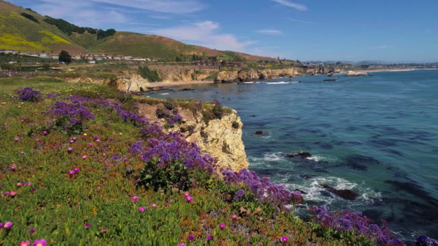 aerial scenic panoramic view of the coastline with flowers blooming on the cliff 1 nearby pismo beach, the small city on the pacific ocean, californian west coast, in the sunny spring day.  aerial drone 4k uhd video with the forward camera motion. - tide stock videos & royalty-free footage