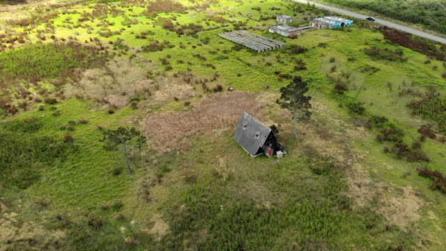 vídeos de stock e filmes b-roll de aerial: scenic ruinous hut next to other buildings on meadow among forest - outro tema