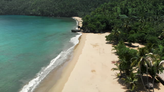 Aerial: Scenic Tropical Beach with White Sand Among Lush Green Jungle